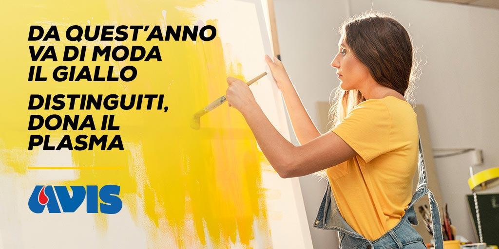 banner giallo pittrice avis trani